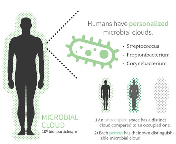 mikrobenwolke2g