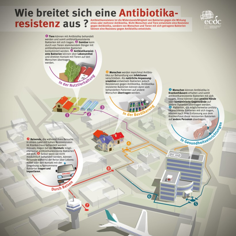 How does antibiotic resistance spread?