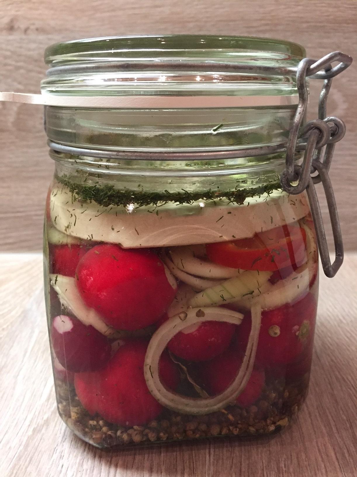 Radieschen mit Knoblauch, Dill und Zwiebeln fermentiert (S. Thiele)