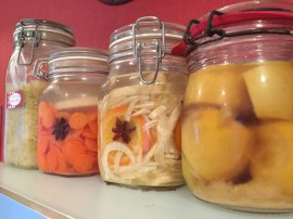 Auswahl fermente