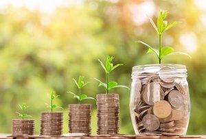 raha kasvatamine