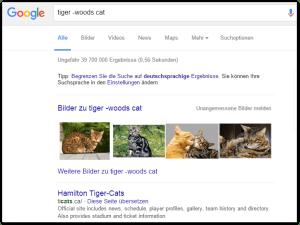 2016-01-11 01_02_04-tiger -woods cat - Google-Suche