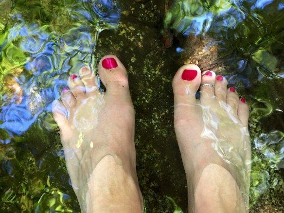 OR feet