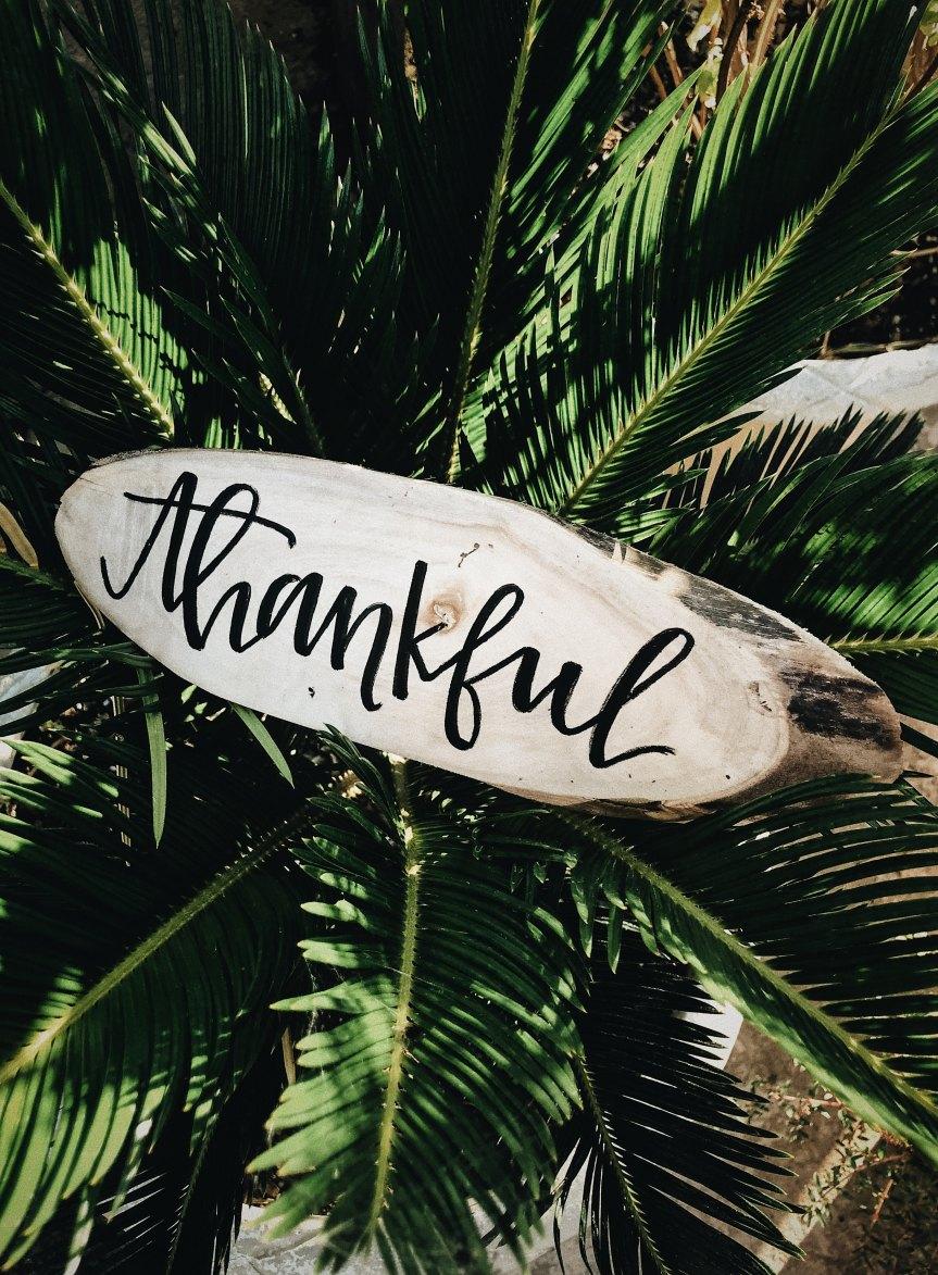 Thankful Thursday – 25 January 2018