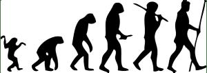 schema dell'evoluzione umana