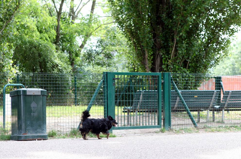 Un'area verde recintata per cani (da il Corriere.it)