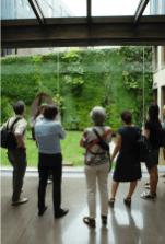 Visita Guida Tetti e Pareti Verdi - © CLEVER Cities Milano