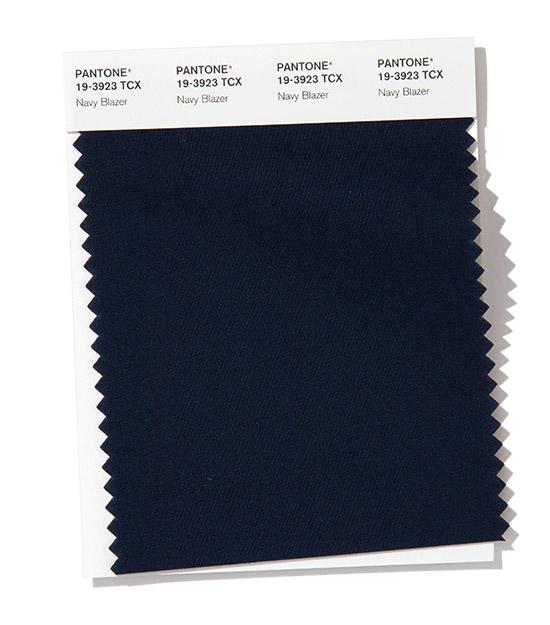 PANTONE 19-3923 Navy Blazer - Морской блейзер