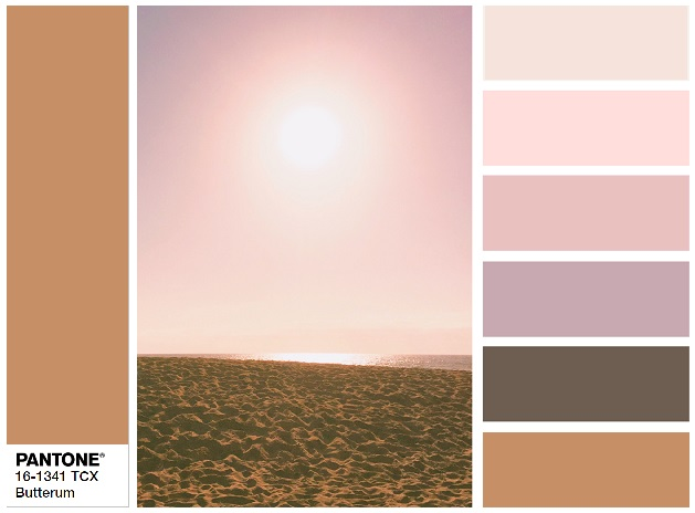 PANTONE 13-2808 Butterrum - color combination