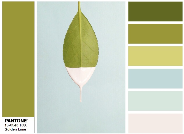 PANTONE 16-0543 Golden Lime - color combination