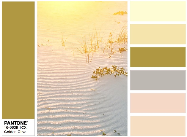 PANTONE 16-0639 Golden Olive - combination
