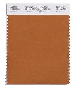 PANTONE 16-1438 Meerkat модный цвет коричневый осень 2018 Пантон