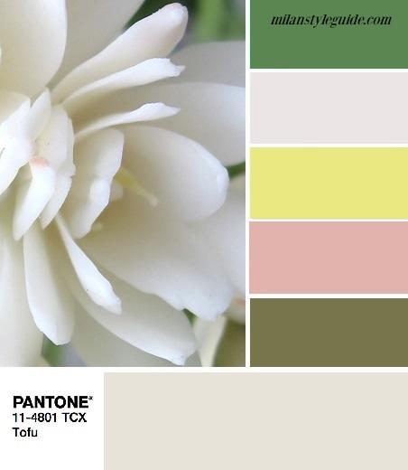 PANTONE 11-4801 Tofu цветовые комбинации с белым