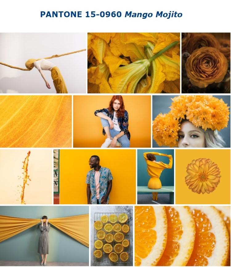 PANTONE 15-0960 Mango Mojito манговое мохито
