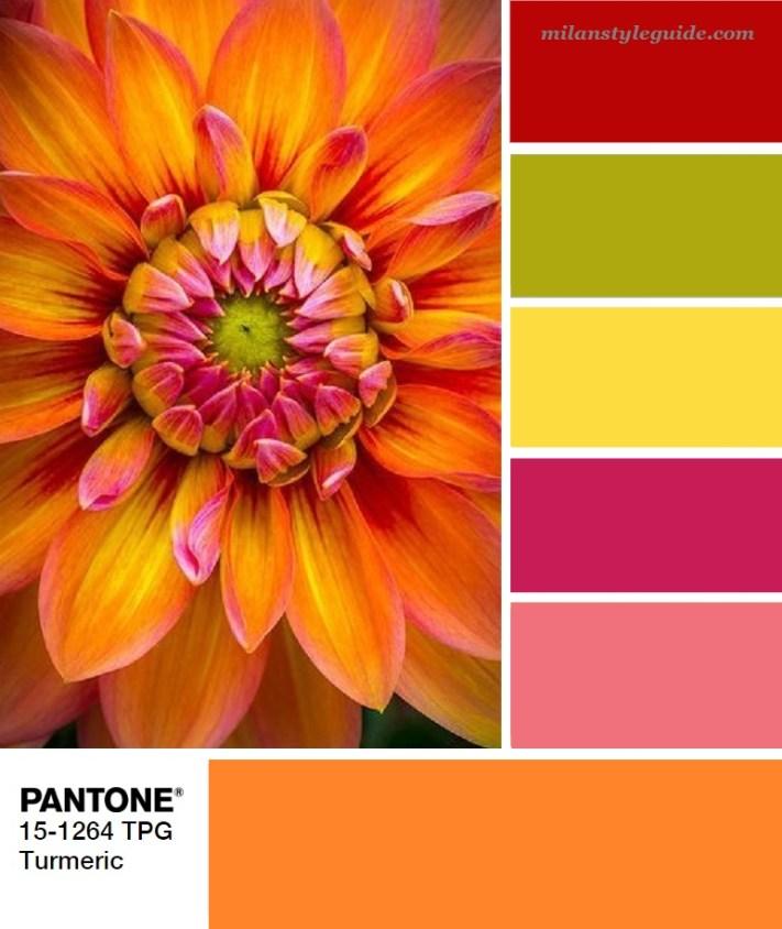 модная цветовая палитра весна лето 2019 Пантон Swatch Turmeric PANTONE 15-1264