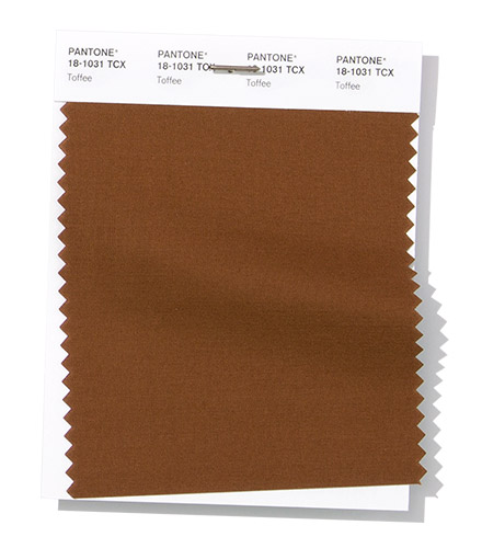 PANTONE 18-1031 Swatch Toffee тоффи