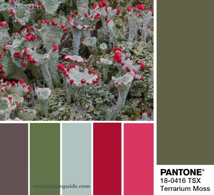 модная цветовая палитра весна лето 2019 Пантон Pantone 18-0416 Terrariun Moss