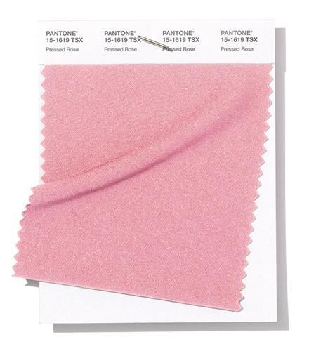 Пантон модный розовый цвет весна лето 2019 2019 Pressed Rose