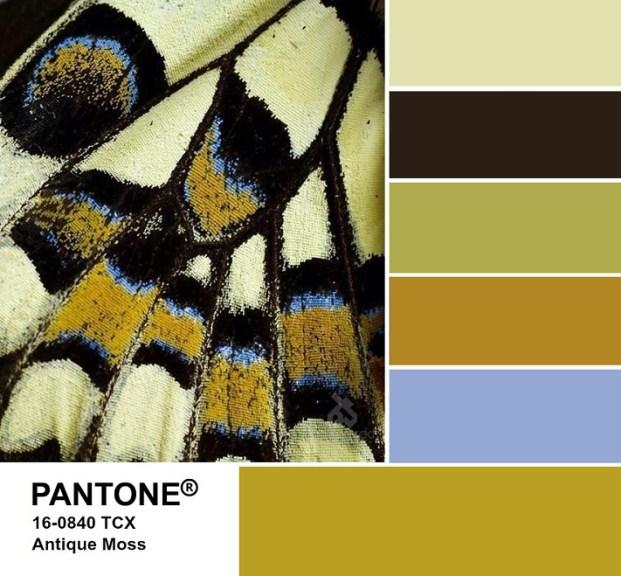 PANTONE 16-0840 Antique Moss palette - Античный мох