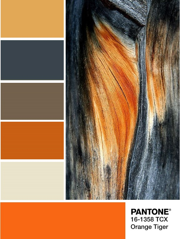 Orange Tiger Pantone 16-1358 palette