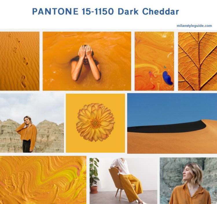 оранжевый осень 20019 PANTONE 15-1150 Dark Cheddar модный цвет осень зима 2019/2010