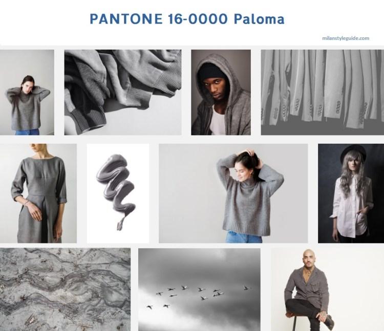 цвет осени 2019 2020 серый PANTONE 16-0000 Palomaмодный цвет осень зима 2019/2010