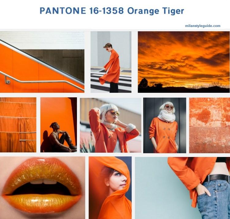 цвет осени 2029 20 оранжевый PANTONE 16-0000 Paloma модный цвет осень зима 2019/2010