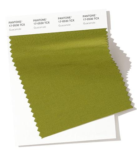 PANTONE 17-0530 Guacamole модный цвет осень зима 2020