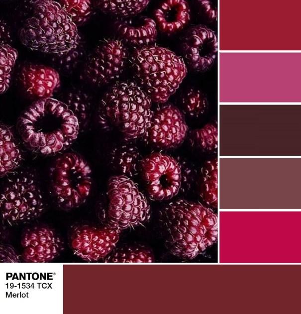 PANTONE 19-1534 Merlot palette