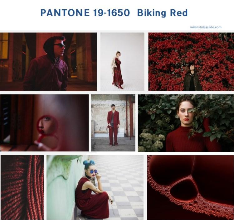модный бордовый цвет осень зима 2019/2010 PANTONE 19-1650 - Biking Red
