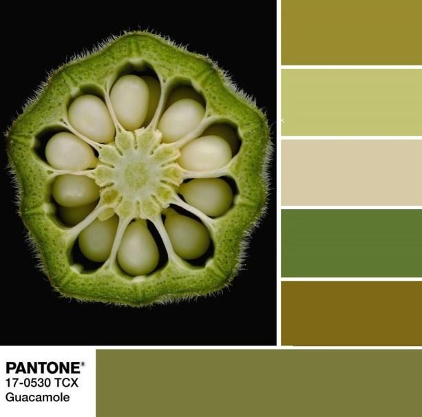 Pantone 17-0530 Guacamole palette