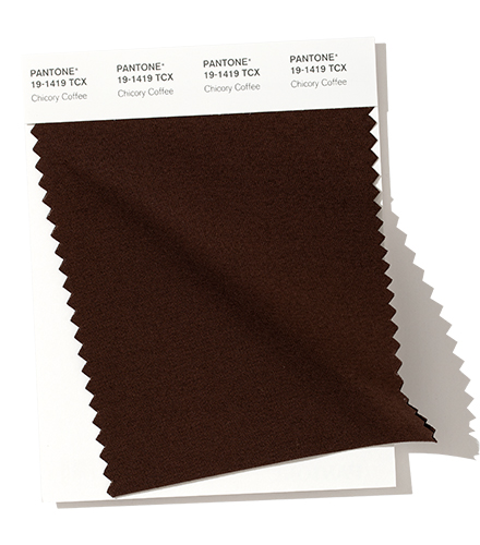 PANTONE 19-1419 Chicory Coffee