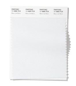 модный цвет весна лето 2020 11-4800 Blanc de Blanc