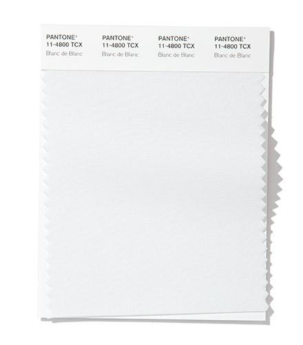 PANTONE 11-4800 Blanc de Blanc