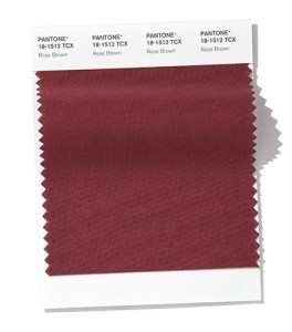 PANTONE 18-1512 Rose Brown