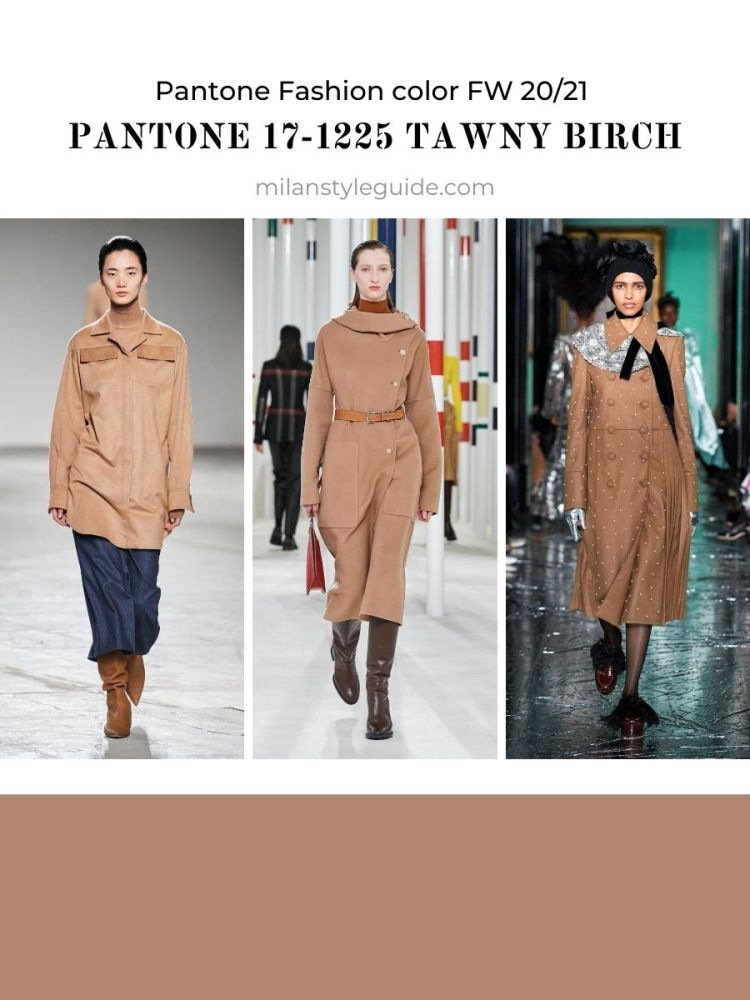 Fashion color trend Fall Winter 2020 2021PANTONE 17-1225 Tawny Birch