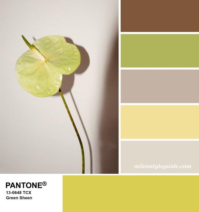 PANTONE 13-0648 Green Sheen - Зеленый блеск