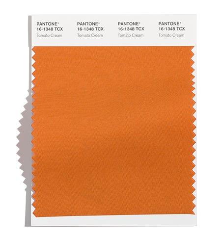 модный цвет осени и зимы 2021 2022 PANTONE 16-1348 Tomato Cream