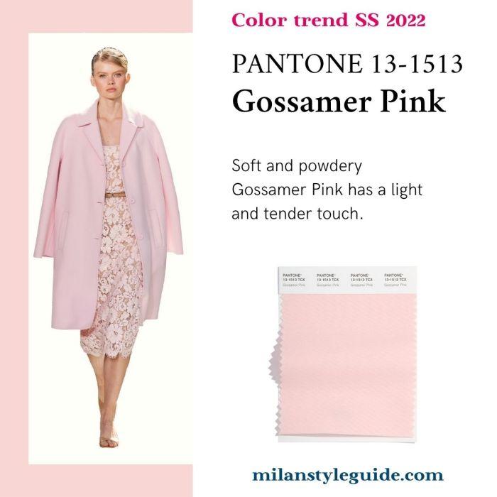 PANTONE 13-1513 Gossamer Pink - Розовая паутина
