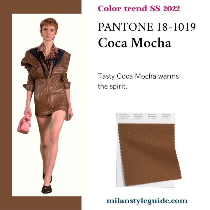 PANTONE 18-1019 Coca Mocha