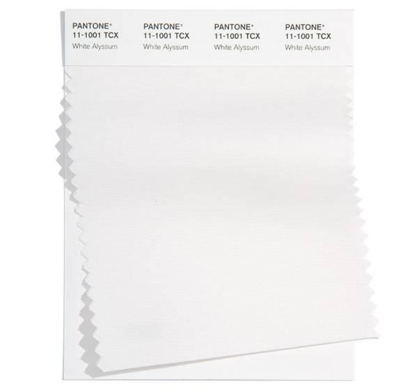 PANTONE 11-1001 White Alyssum