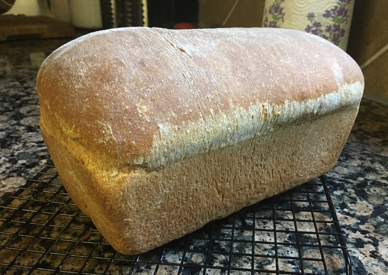 Soft whole wheat bread