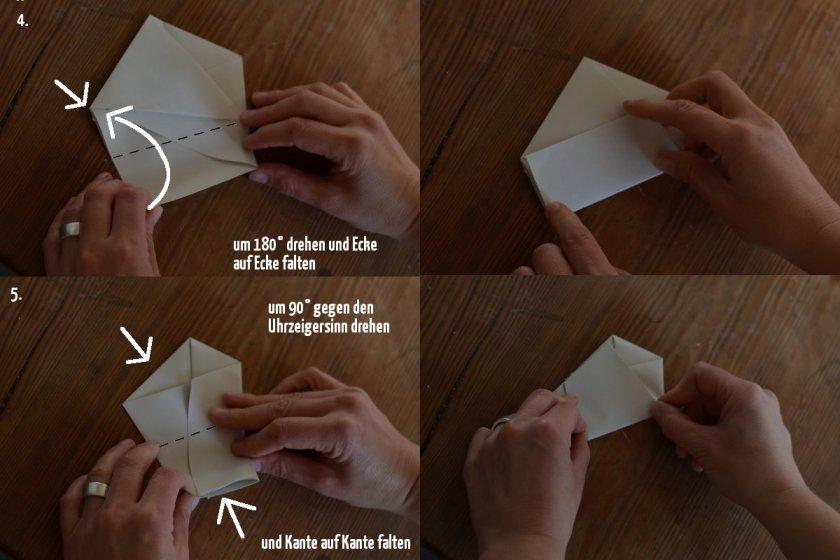 Samentüte Schritt 4 bis 5
