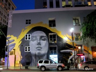 Spring Street - Mural and Loft