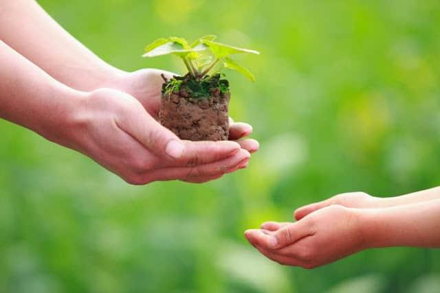 Dar para recibir; 5 tips para activar la clave de la prosperidad