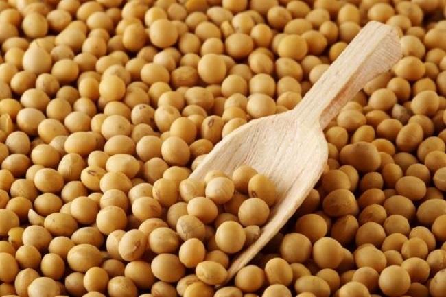 Few negative effects of soy