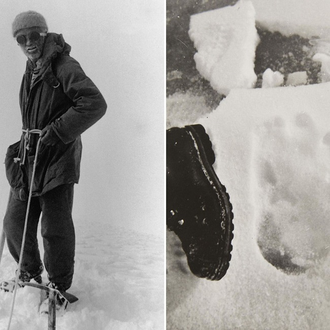 English explorers have also reported footprints