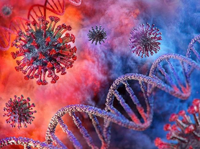 Is genetics a deciding factor