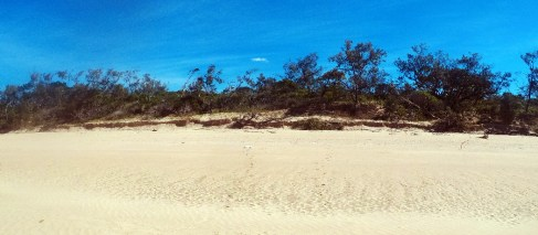Not bad dunes for a tide dom beach