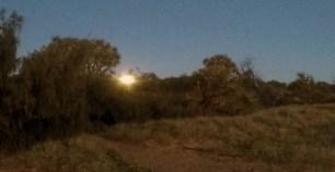 Moon setting just before sunrise at Wreck Rock Beach